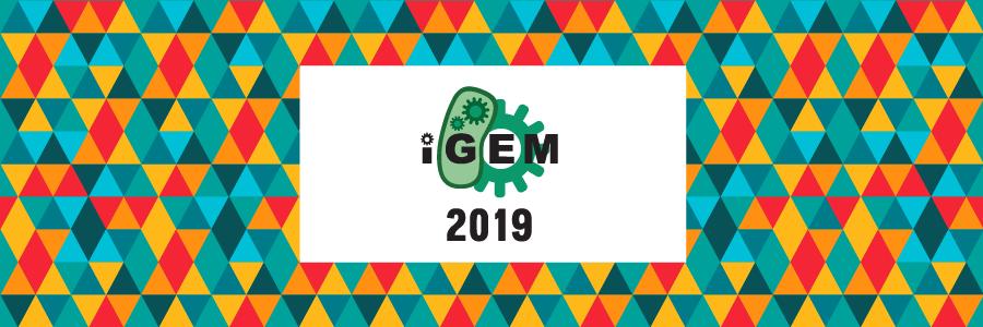 iGEM 2019
