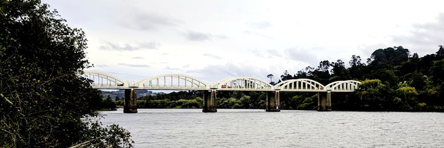 Connecting the people of North Waikato through a network of tracks