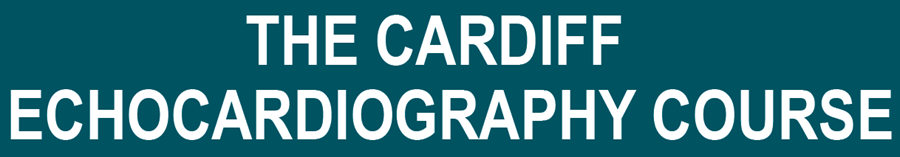 Cardiff Echocardiography Course