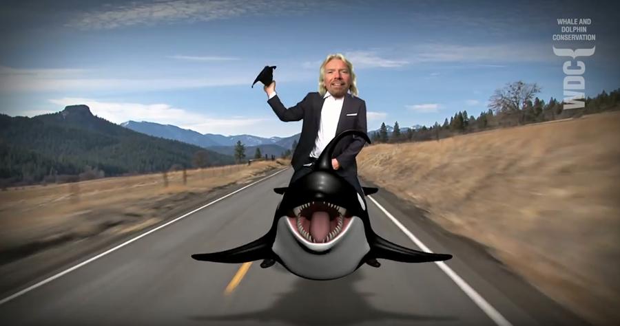 Richard Branson riding an orca