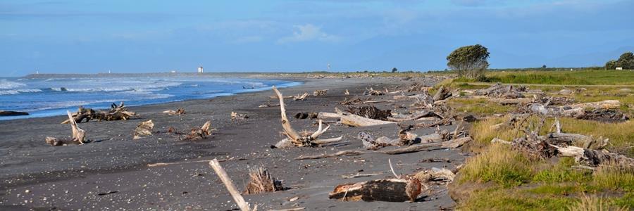 Easement agreement grants way for construction to start on Kawatiri Coastal Trail
