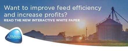 AB Vista - White Paper