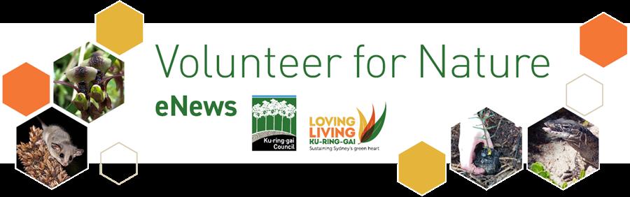 Volunteer for Nature