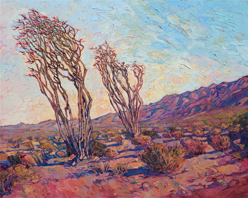 """Ocotillo Light"""