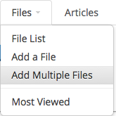 Add Multiple Files Selector