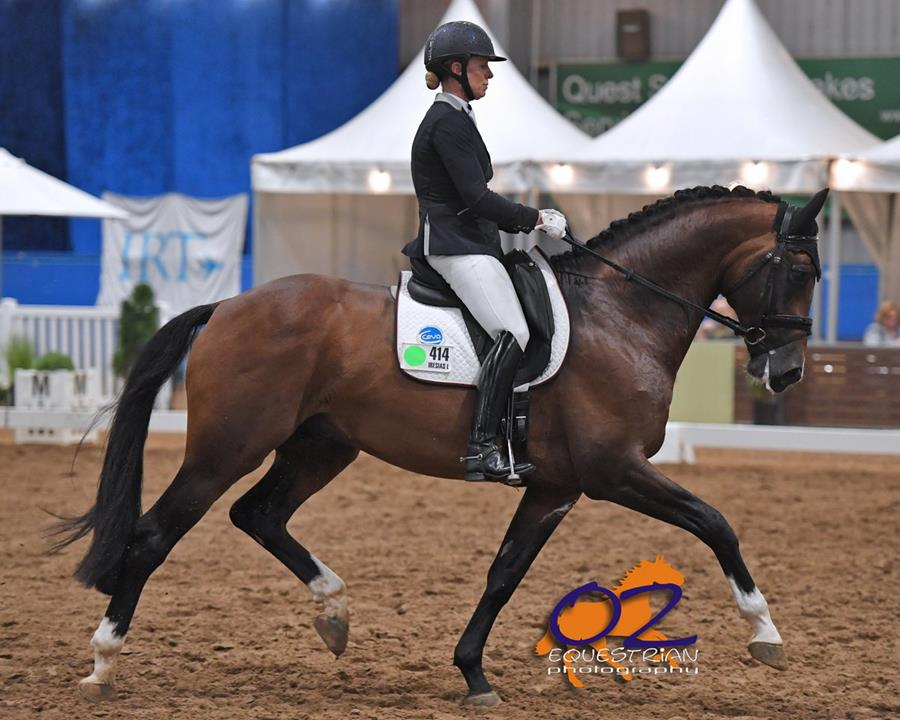2018 DJWTS Dressage Champion of Champions