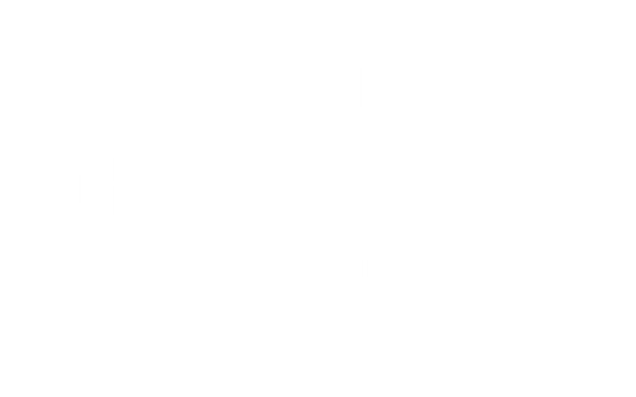 A Brave New World: Picking the Lock of the Lockdown