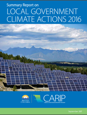 CARIP Summary Report 2016