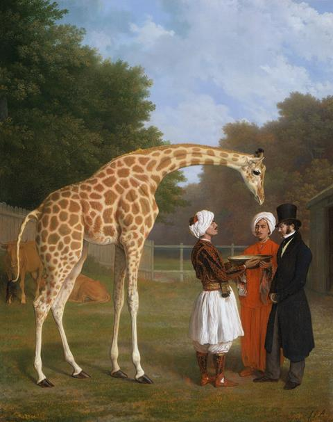 The Nubian Giraffe, Jacques-Laurent Agasse (1767-1849) Oct 1827 The Royal Collection Trust © Her Majesty Queen Elizabeth II 2015